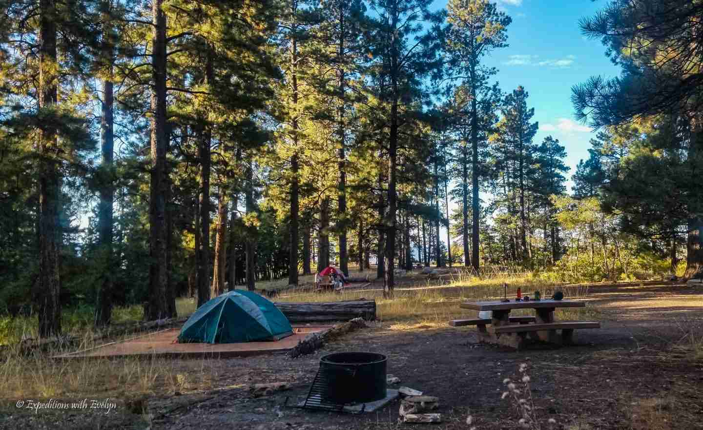 Campsite with a tent, picnic table, and fire pit amongst tall trees near the Rim of the Grand Canyon