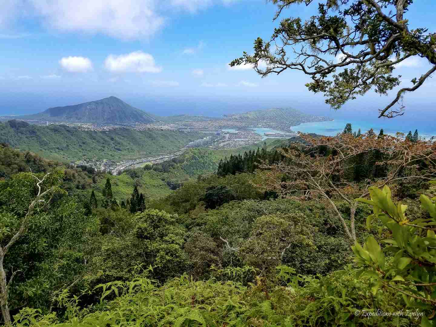 A view like this is why I love hiking.  View overlooking a volcano and the coast from a nearby mountain.