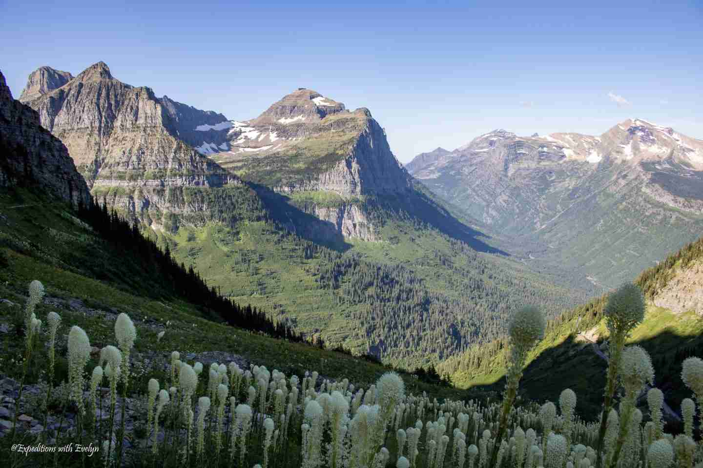 Tall mountains covered in greenery reach to the sky and are speckled with bear grass and wildflowers at Glacier National Park.