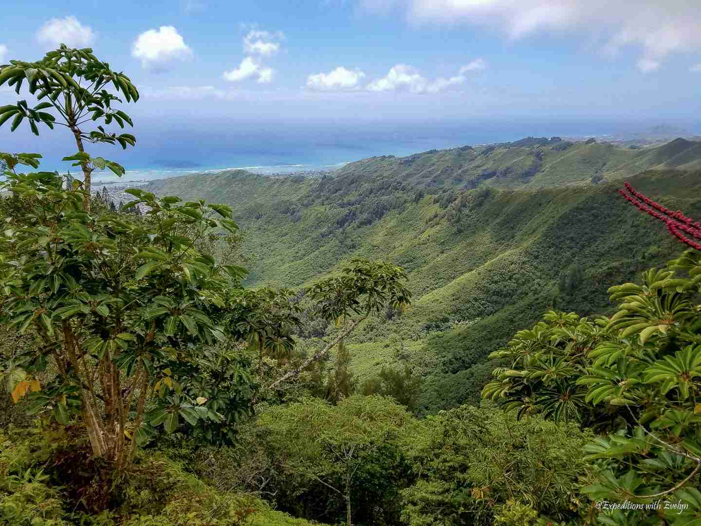Green mountain jungle meets the electric blue Hawaii coast line on the views from the Kuilouou Ridge Trail.